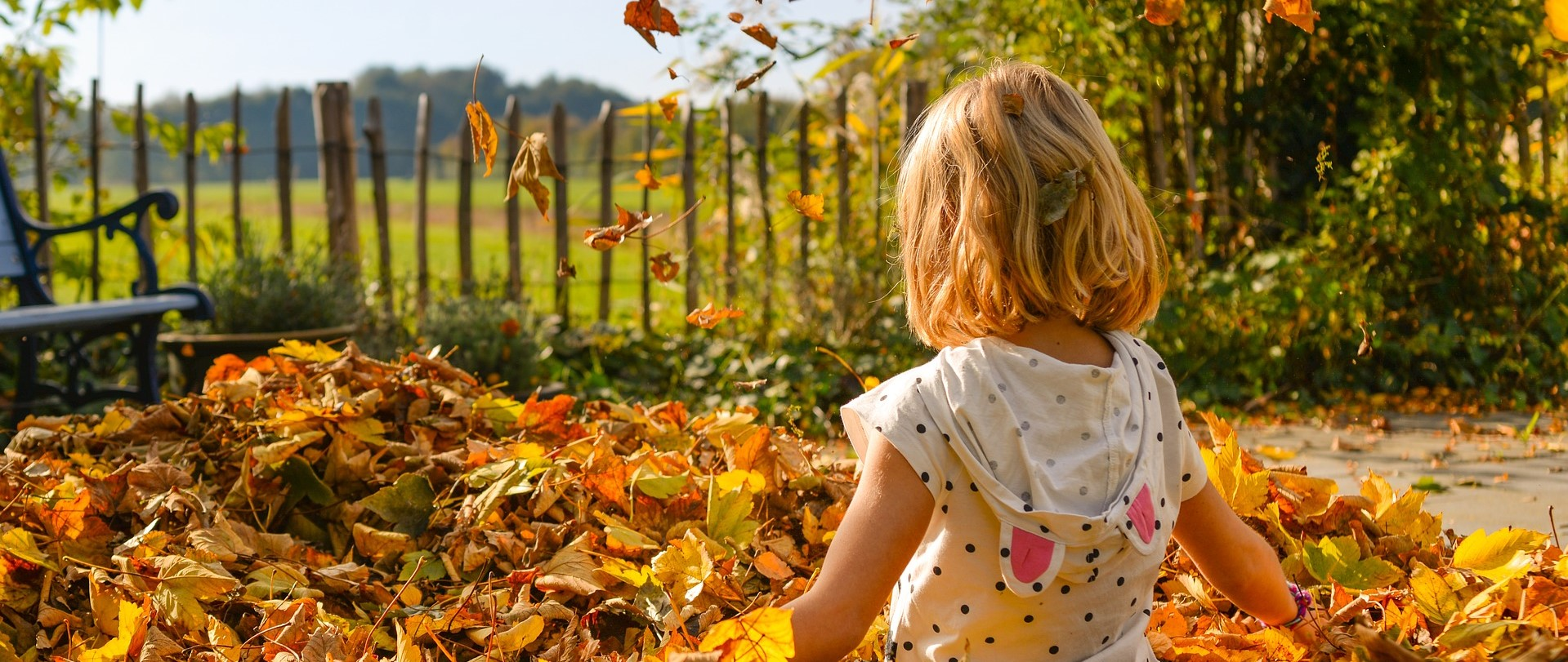 Girl Enjoying autumn Foliage in Missouri | Kids Car Donations