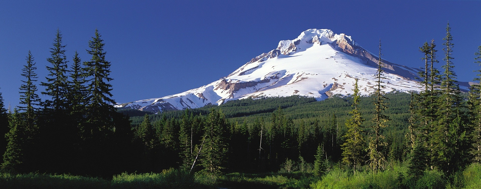 Mount Hood is a 11,249 foot-long Stratovolcano located in Oregon | Kids Car Donations