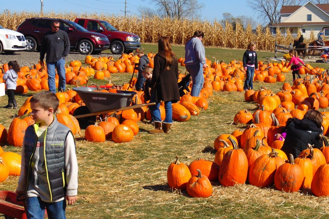 Pumpkin Patch with Kids | Kids Car Donations