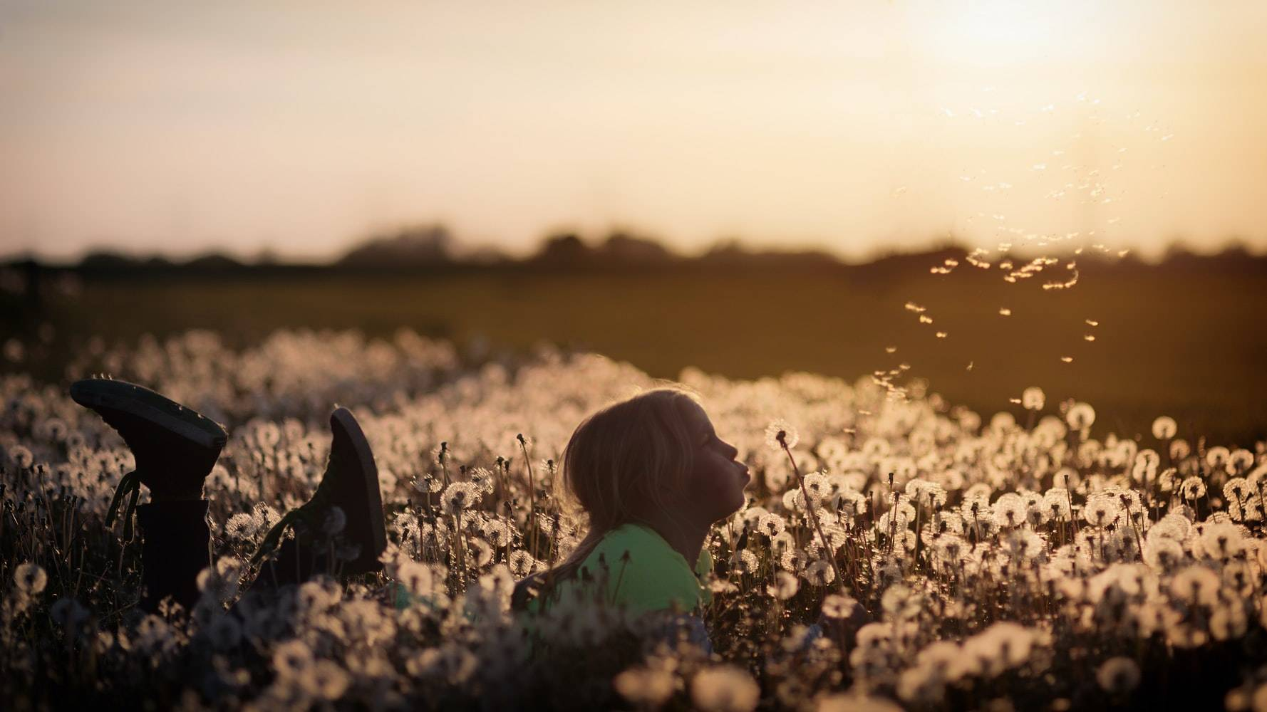 Kid Lying on a Field with Dandelions | Kids Car Donations